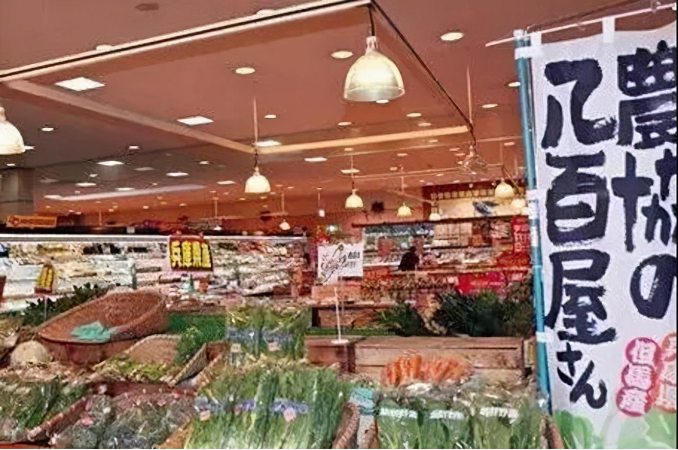 """留学生的""""菜篮子""""--在日本去哪买菜最实惠?"""