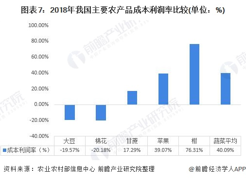 2019年中国蔬菜行业运行发展现状分析