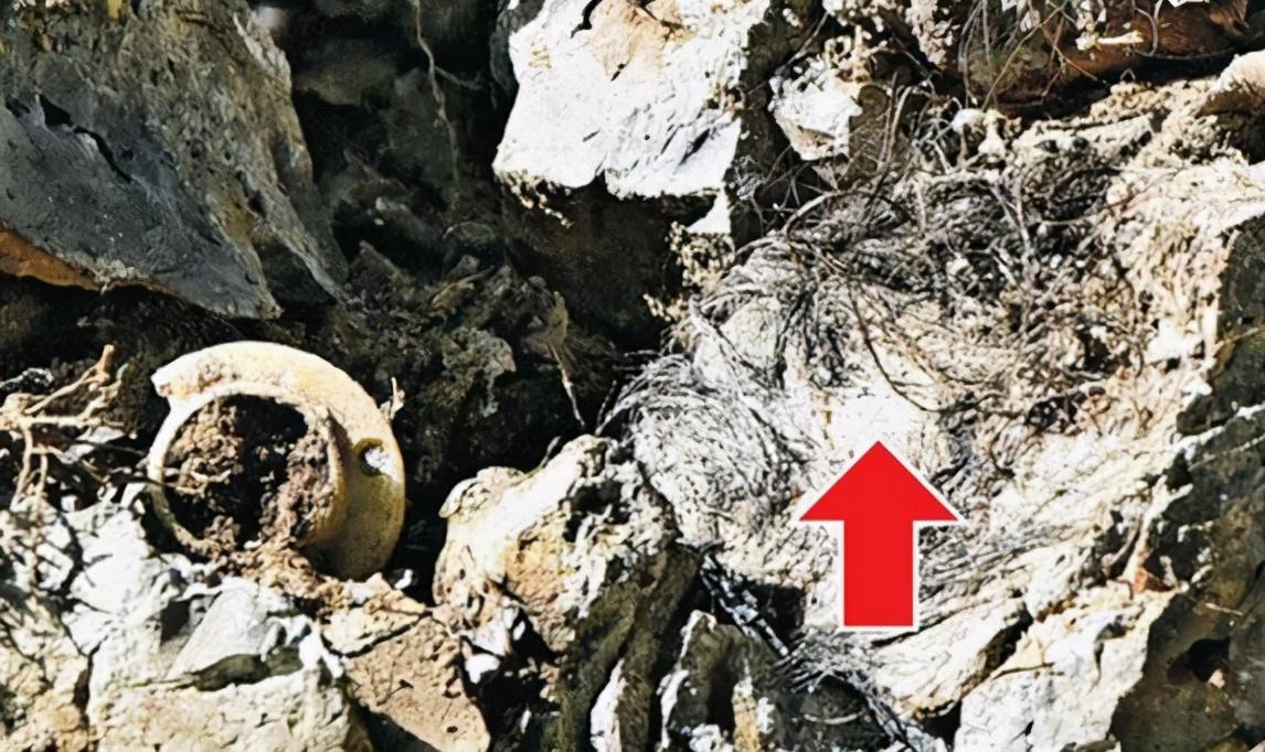 日本悬案:福岛便池藏尸案,至今尚未侦破,男子究竟如何进入便池