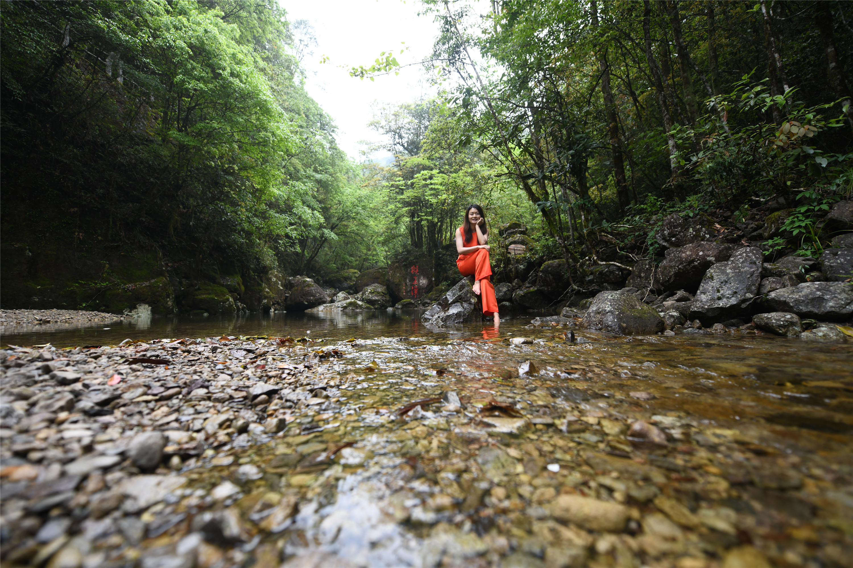 解锁浙南15℃的夏天,有治愈系的美景,更有远离喧嚣的幽雅