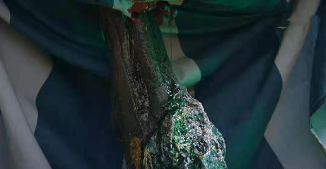 《司藤》秦放其实是树,海报和剧情有暗示,景甜直播中曾说漏嘴