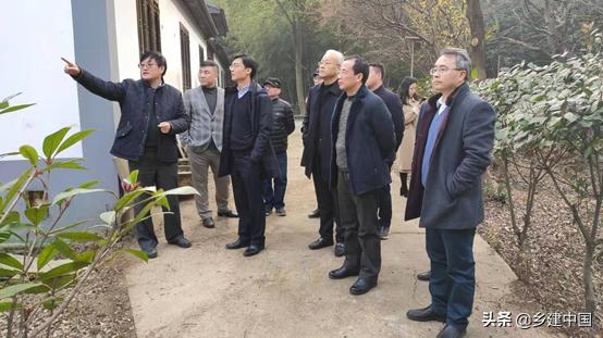 江阴市003号民宿——朝阳山庄:定山竹海里的康美基地