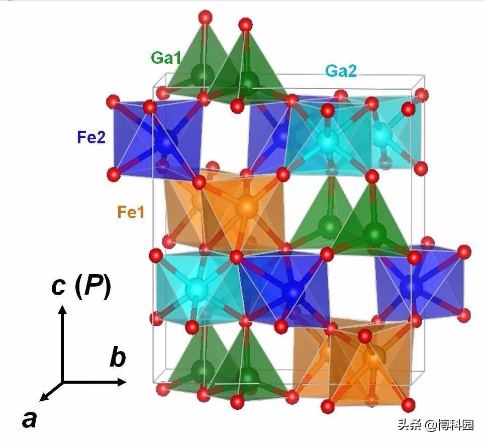 研究表明:原子的范德华异质结构,能同时表现出铁磁性和铁电性