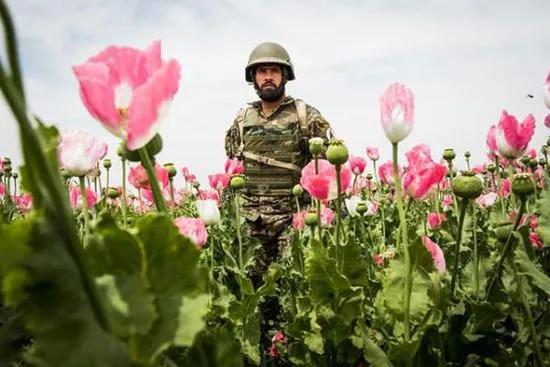 你不知道的阿富汗:美国撤军,留下一个庞大的产业