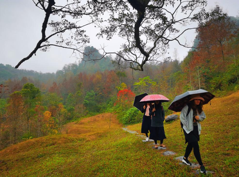 """广西百色竟藏着一个""""枫叶王国"""",一到秋季美成童话"""