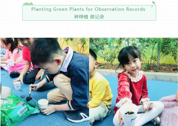 PICLC Arbor Day | 遇见春天 拥抱绿色