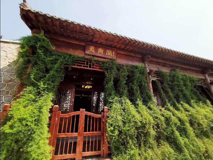 中国著名书法家祝醒寰先生走进秦皇岛左右家园