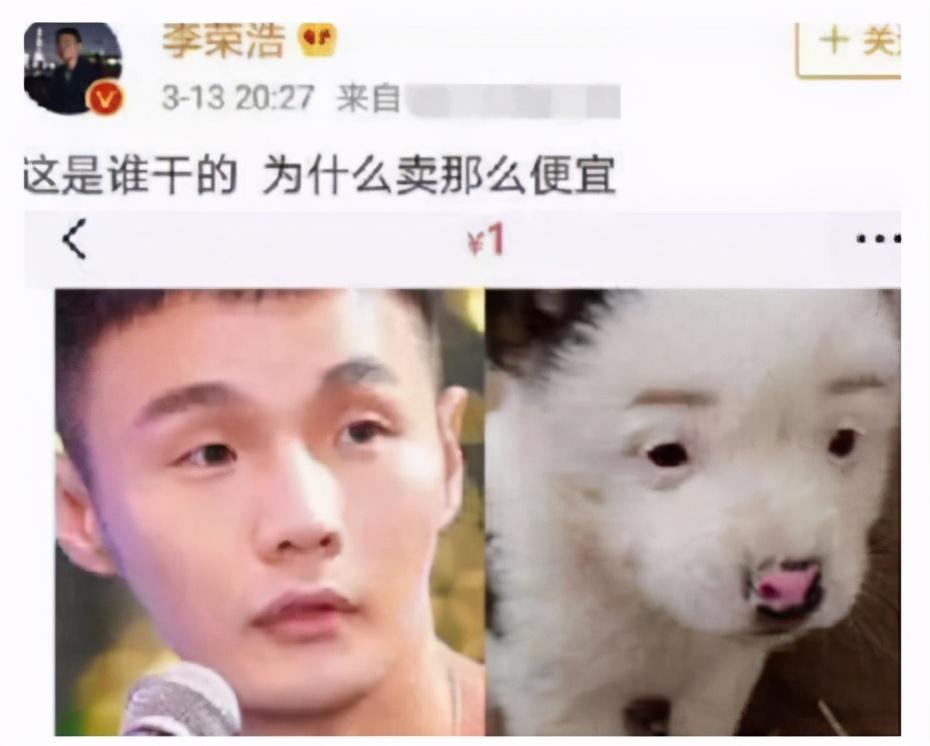 花式秀恩爱,杨丞琳晒狗界李荣浩,粉丝直言:他眼睛没这么大