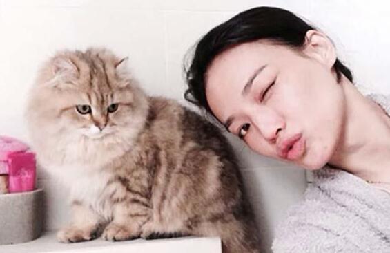 """猫咪这9个行为,是爱你""""入骨""""的表现,如果有请珍惜"""