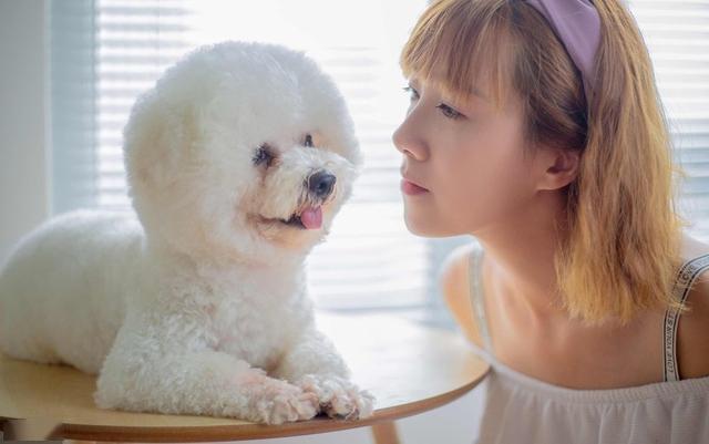 """为什么更多人愿意养公狗?7个原因告诉你""""真相"""""""