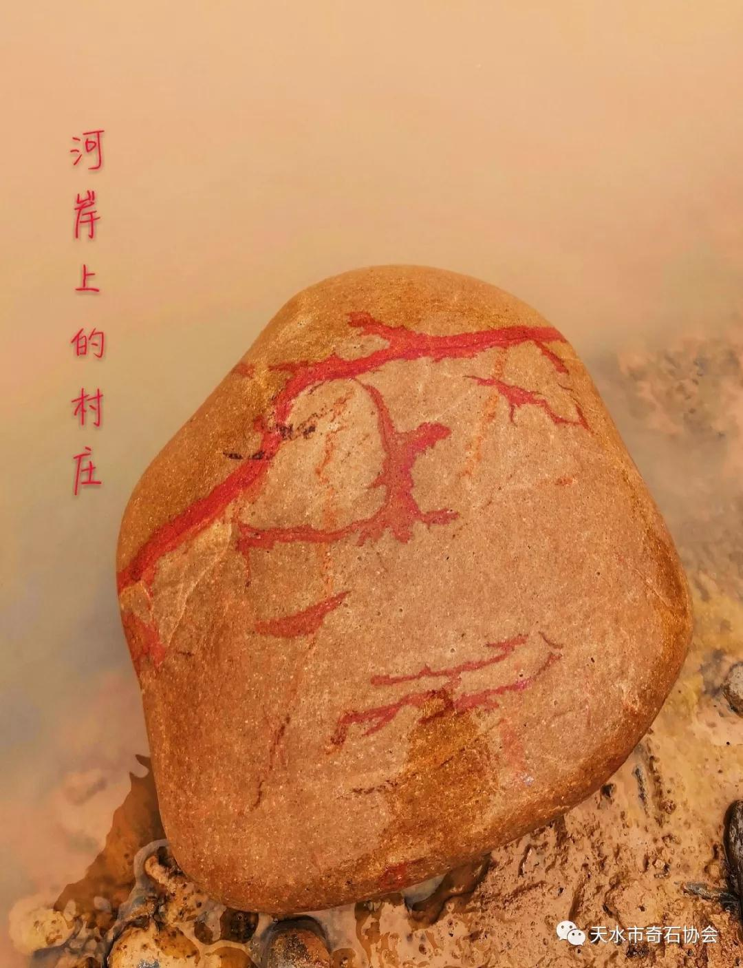 渭河,赏石人寻梦的地方