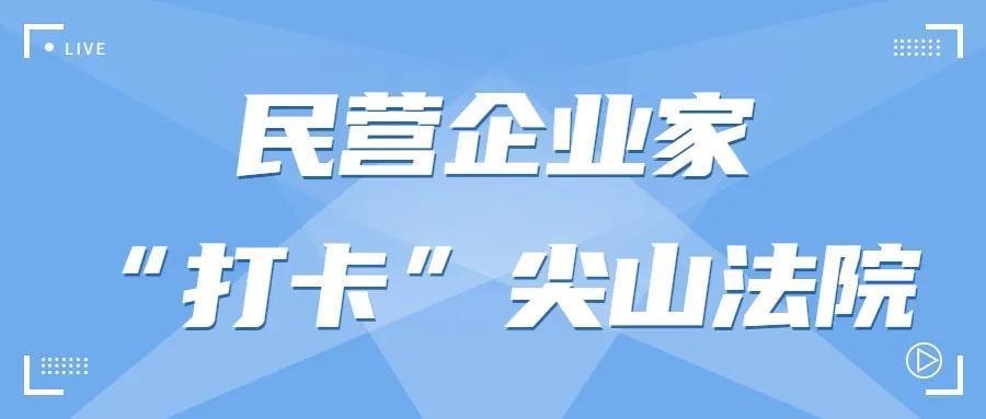"""【第74次公众开放日】民营企业家""""打卡""""尖山法院"""