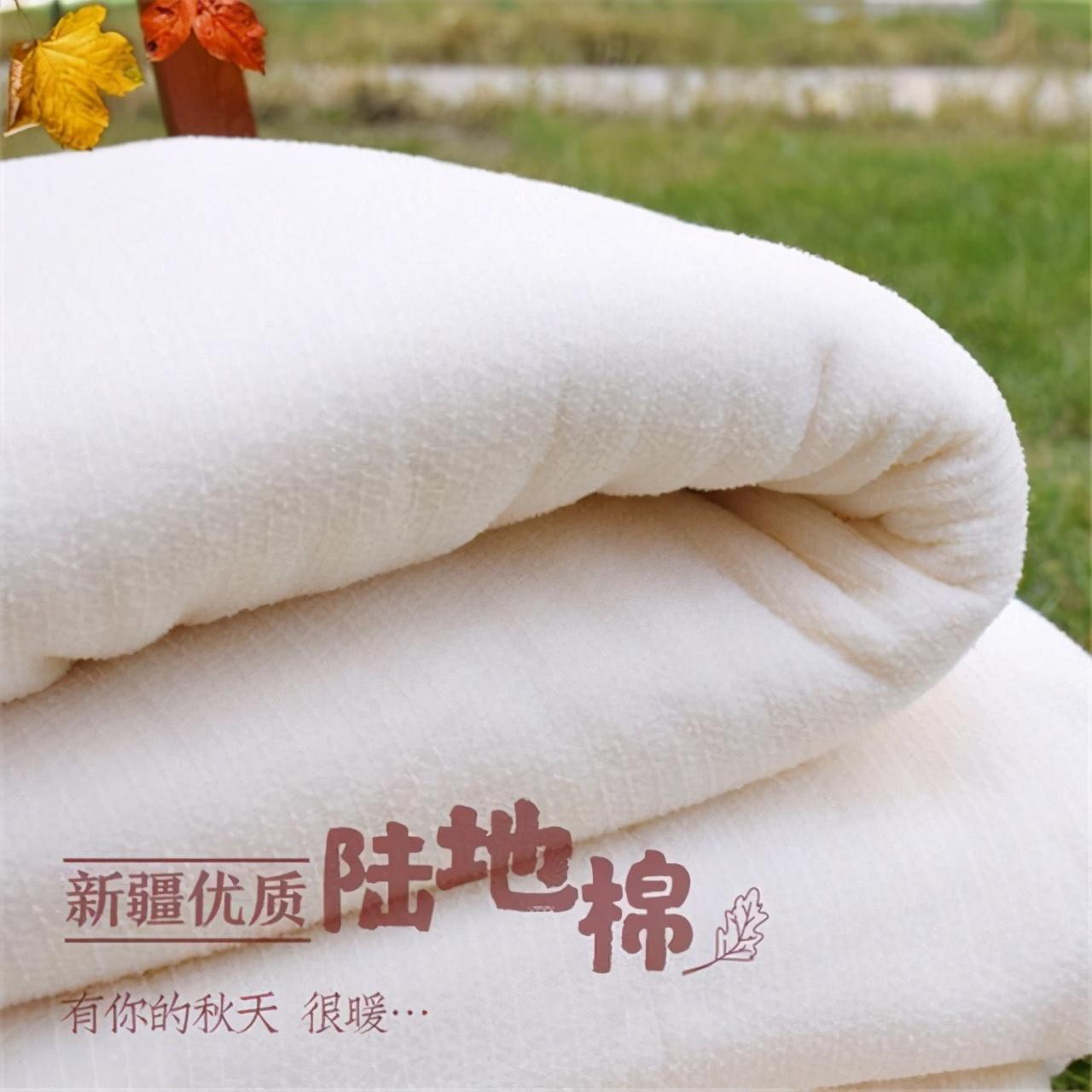 一夜市值蒸发687亿!打错对中国棉花的算盘,耐克损失惨重 市值蒸发 中国棉花 耐克 第4张