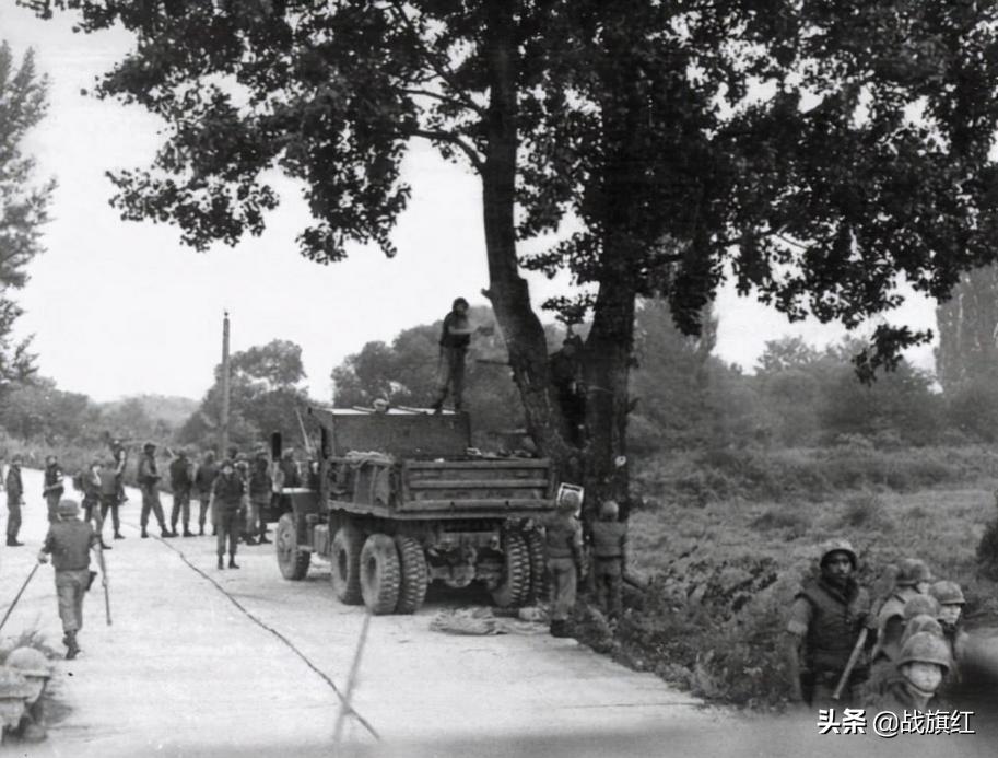 板门店一颗白杨树,差点引发二次朝战,朝军当场砍死2名美军