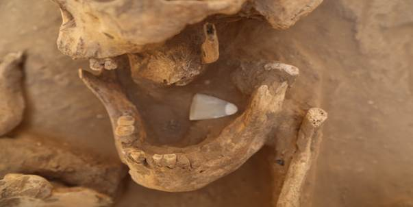 陕西:石峁文化大型墓地首次全面揭露