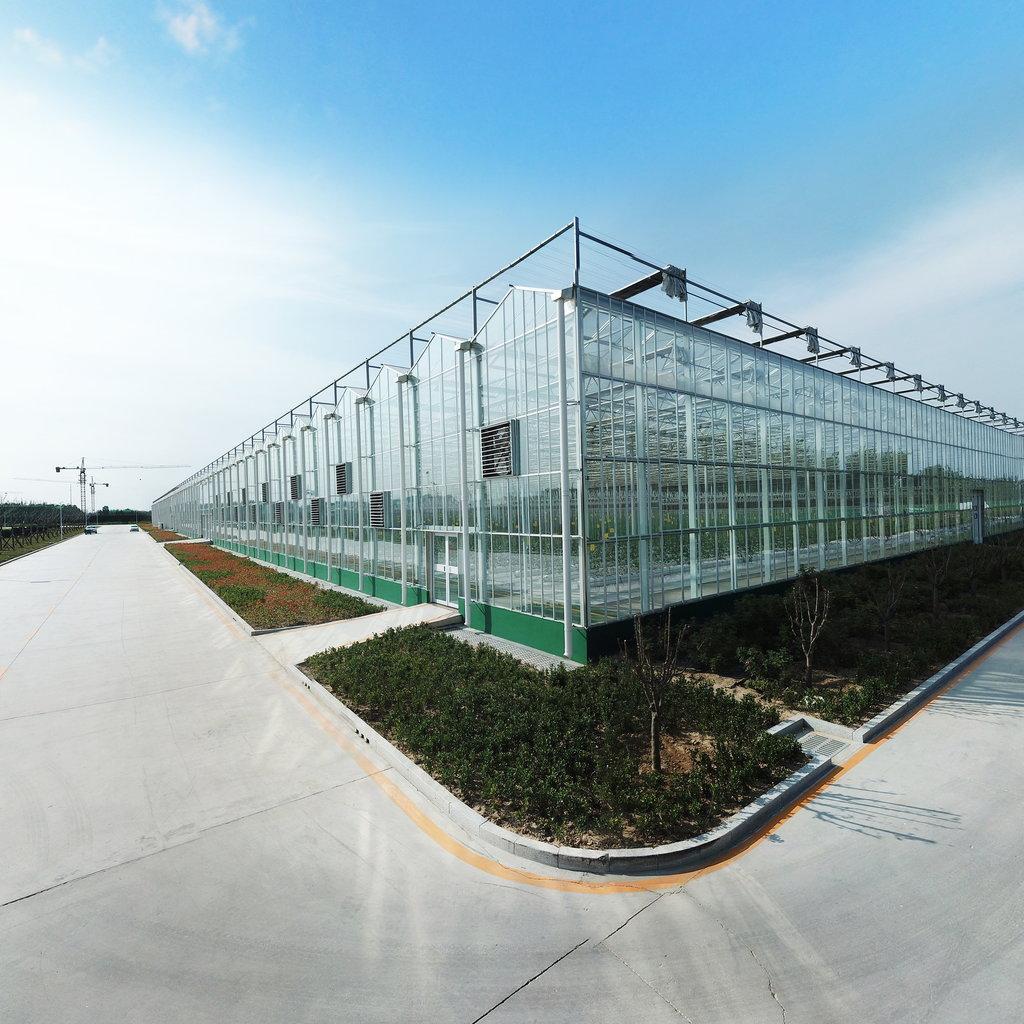 纹络型全玻璃温室大棚图纸分享、温室设计参考案例