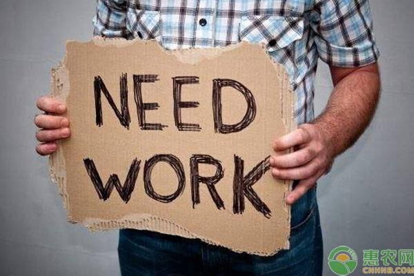 失业金领取有什么条件?金额怎么算?失业金领取办理流程 第2张