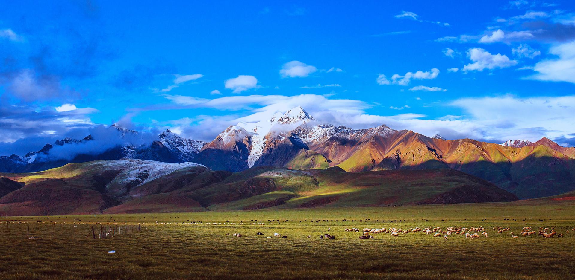 独自开车去西藏很轻松?这可不是说走就走的旅程,这些事项要注意