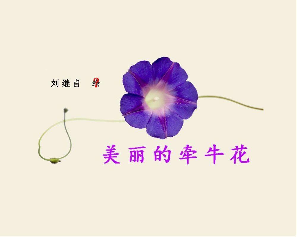 刘继卣短篇连环画童话故事-美丽的牵牛花