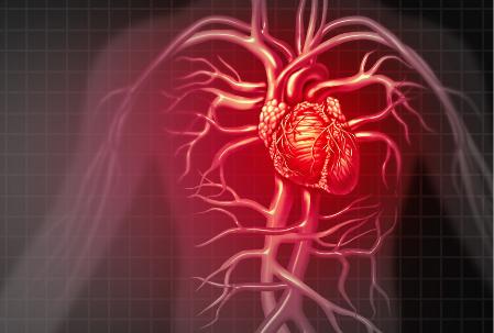 肝硬化不可怕,可怕的是肝硬化会导致多器官衰竭