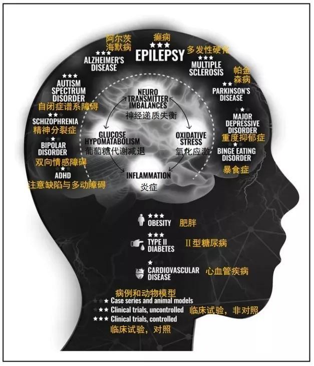 生酮饮食真的能够治疗癫痫患者的心理障碍吗?