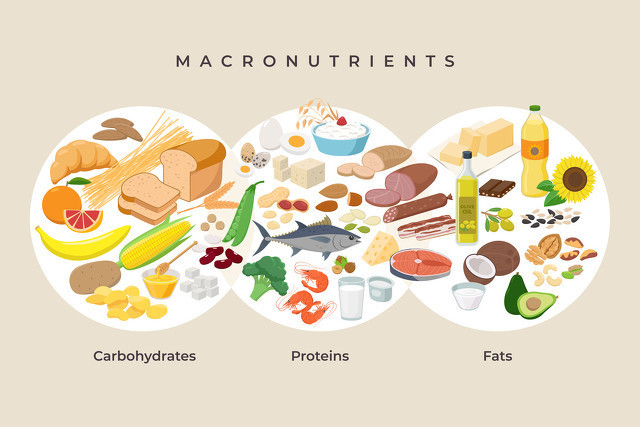 無論是增肌還是減脂,健身都應獲取優質蛋白,這些食物你需多吃