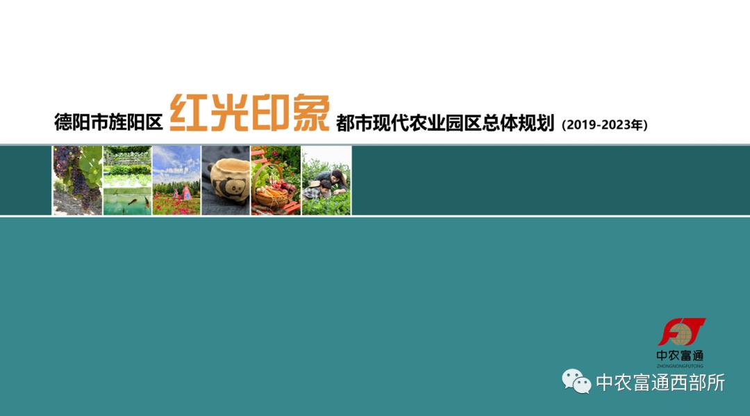 """""""十四五""""时期国家现代农业产业园这样建:提质、扩面、强基"""