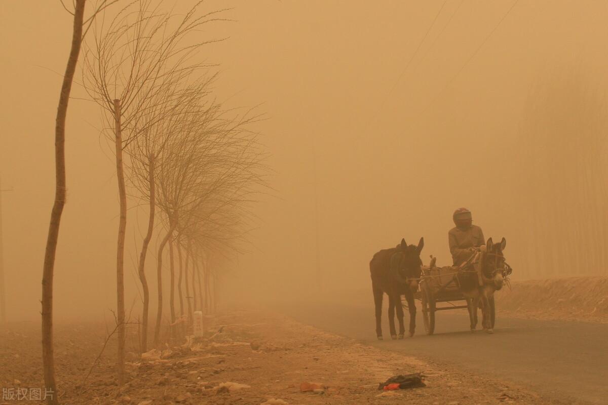 外蒙带来的沙尘暴,或许未来会是常客