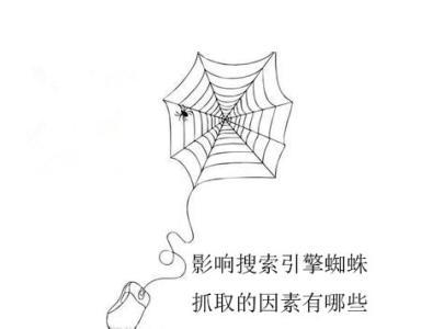 搜索引擎蜘蛛不能爬取网页的原因有哪些