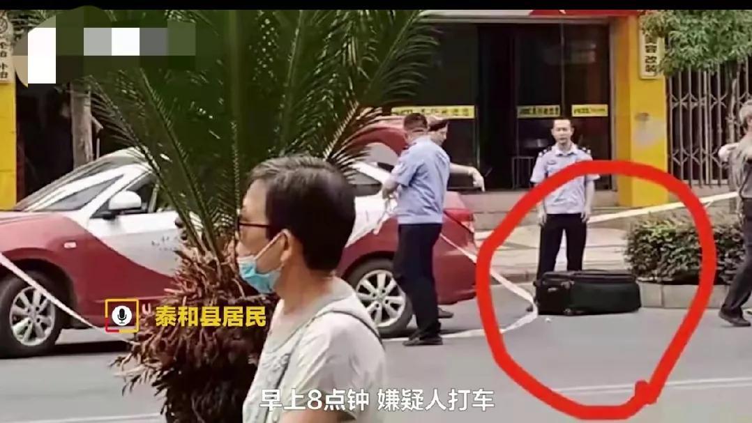 """起底""""江西行李箱藏尸案""""逃犯:原来皮箱藏尸疑已抓获"""
