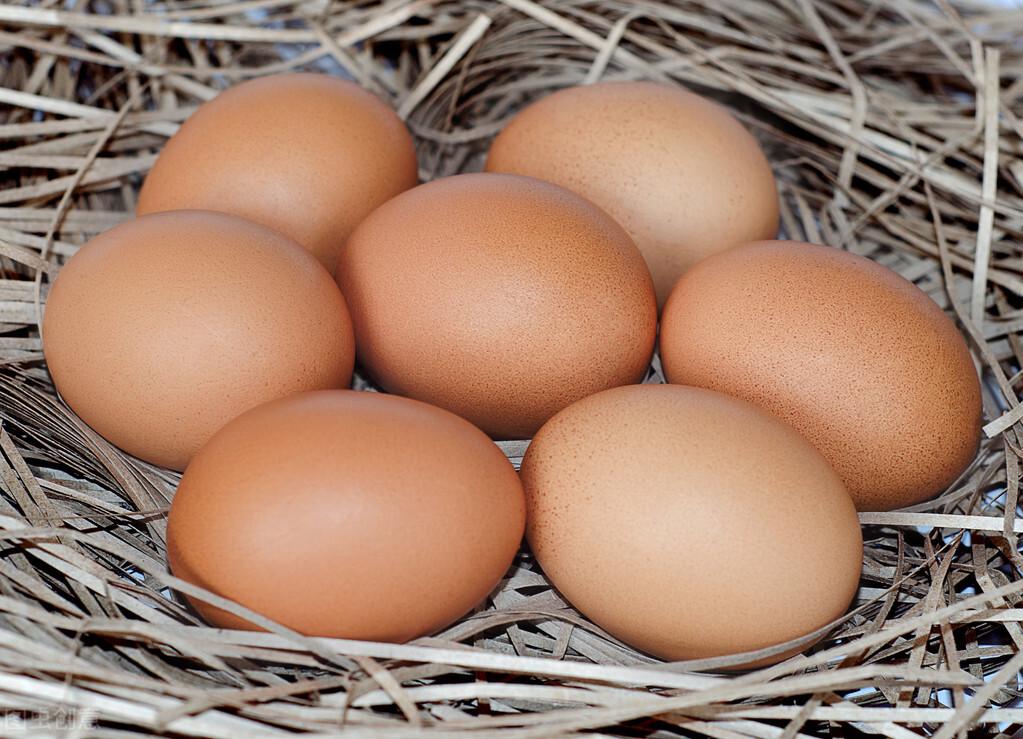 熟雞蛋返生,孵出小雞?可以懷疑,但實踐是檢驗真理的唯一標準