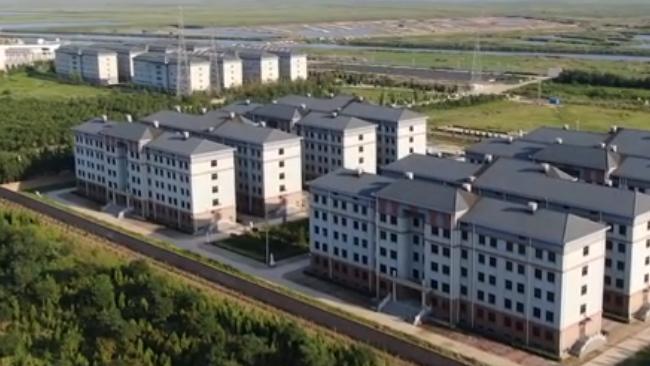 天津一小区16栋楼住十万个骨灰盒 门挂牌匾窗户全黑  第1张