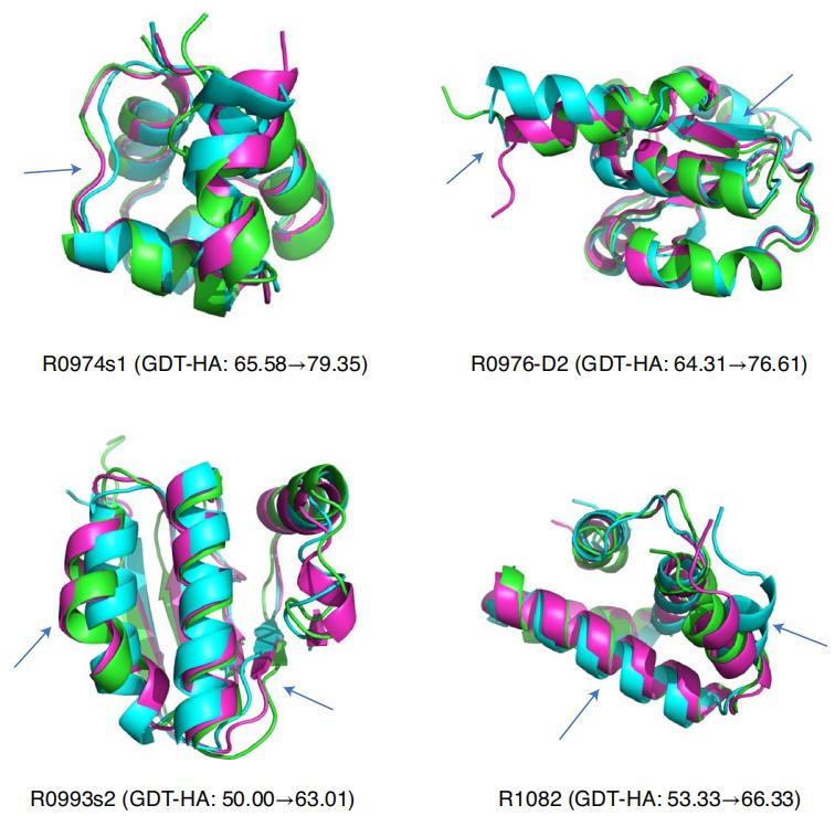 只需1台CPU跑600多秒,GNN快速有效优化蛋白质模型
