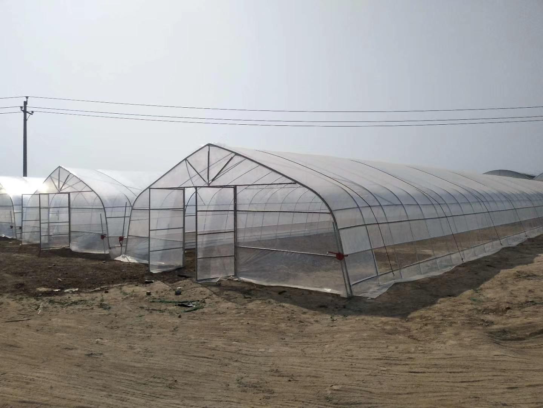 温室大棚薄膜如何安装实用又美观、大棚罩膜注意事项