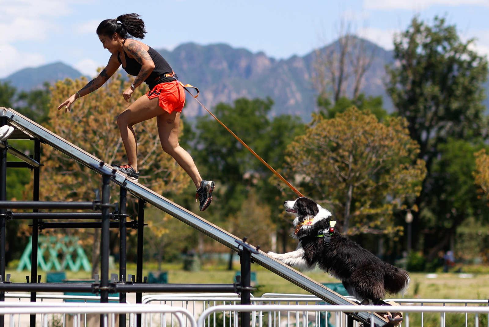 狗巴迪勇士赛开启 三大突破搭建新概念人犬赛事
