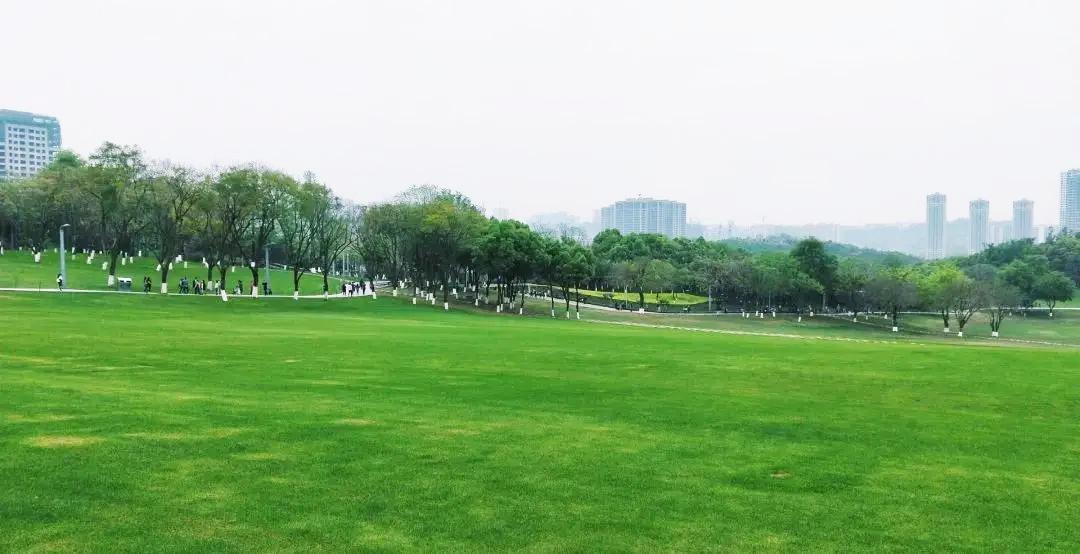 誉峰生活将至 | 十年理想,中央公园大城终兑现