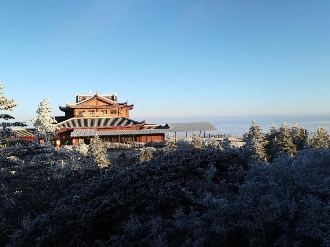 降温后第一场大雪上线!峨眉山迎来童话般雪景