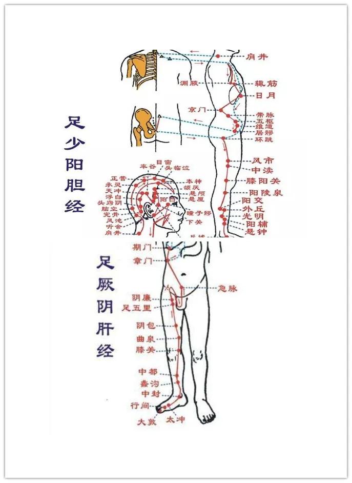 身体小毛病,按压8穴1经,帮助你预防小病变大病 小毛病 第6张