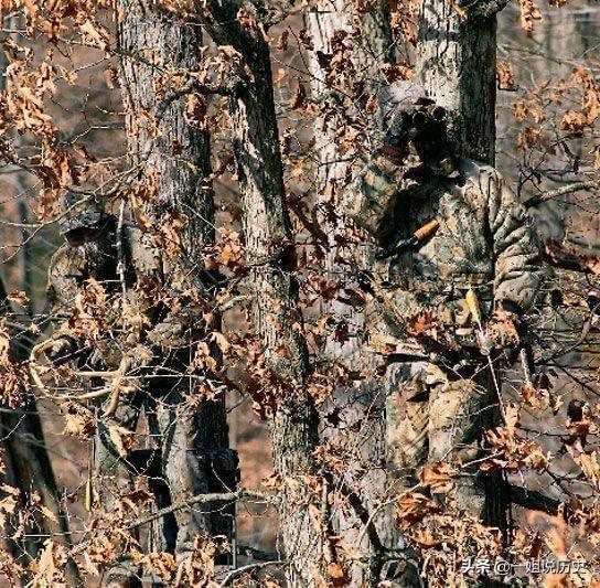 6张图都隐藏着一名狙击手,能一眼看出的人,很有潜力当飞行员