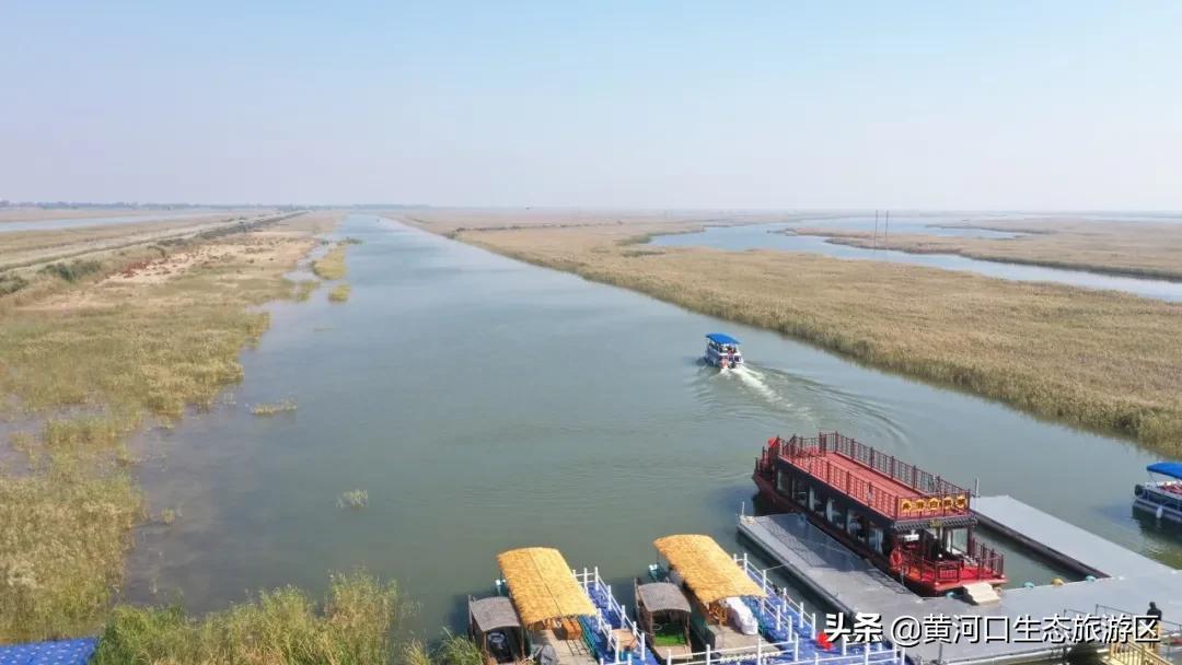 启航2021|带你走遍黄河口的四季