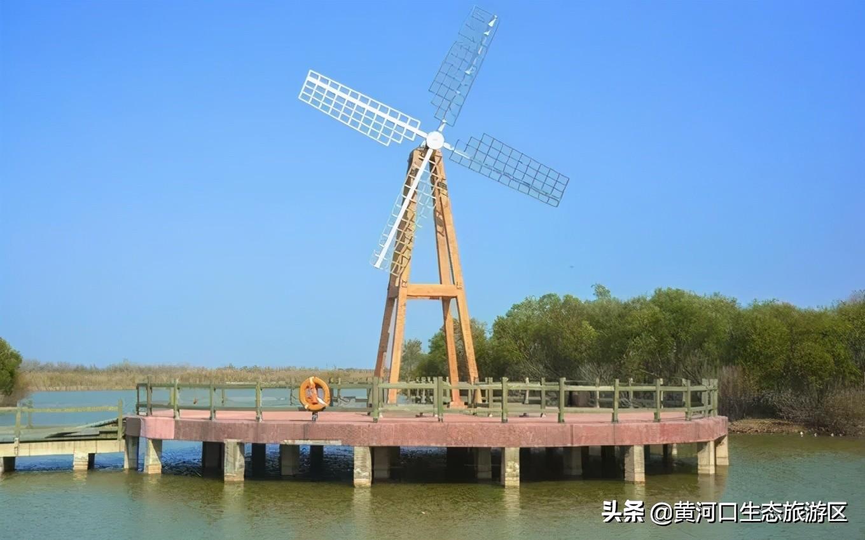 【黄河口生态旅游区】春季超强一日游攻略来袭!