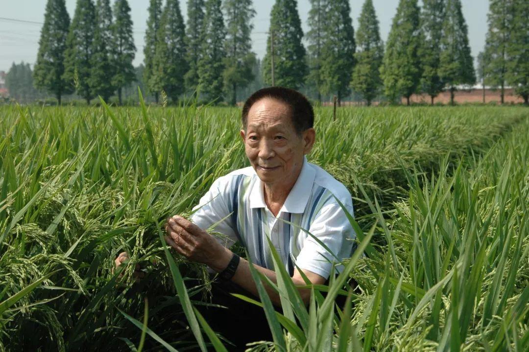 中国的崛起速度令世界叹服,其中这3个中国人功不可没?