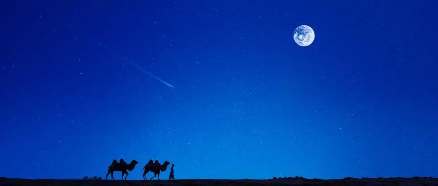 坤鹏论:完美精神有三变 骆驼、狮子和婴儿-坤鹏论