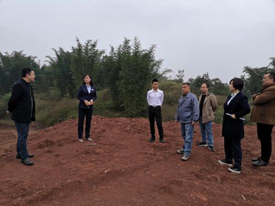 四川省长宁县:金融助力村集体经济发展