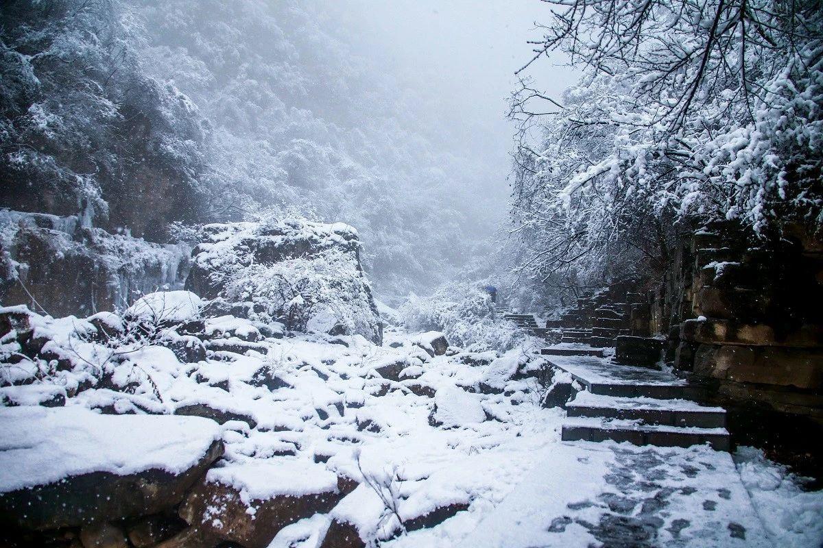一场雪,让云台山变了个模样!简直美爆了