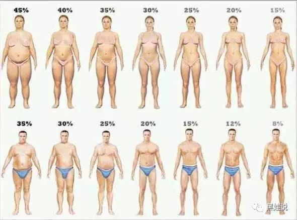 BMI和体脂率达标就完事儿了?不同人群减肥塑形方法来了