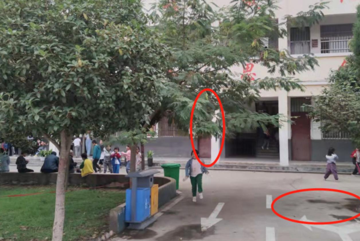 河南醉汉闯进小学殴打校长,被反击打掉三颗牙,校长因伤人被刑拘