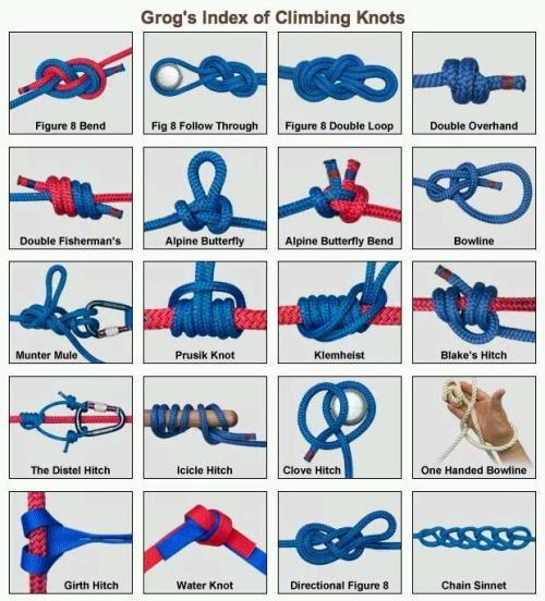 5M中的绳艺,捆绑