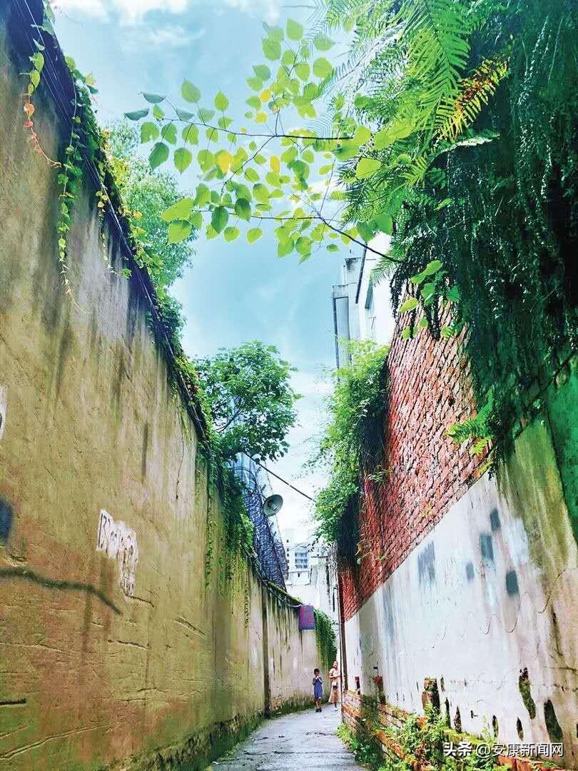 图说安康——家住汉江畔