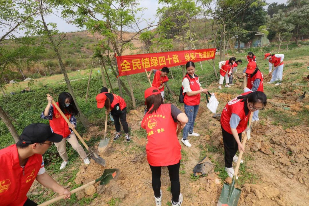 奥运冠军携网友一起植树!第三届网友植树节在盈香顺利举行